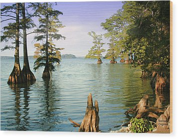 Wood Print featuring the photograph Reelfoot Lake by Bonnie Willis