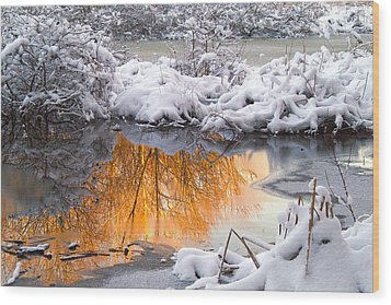 Reflections In Melting Snow Wood Print by Neil Doren
