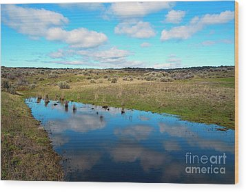 Wood Print featuring the photograph Reflections Of Spring by Mike Dawson