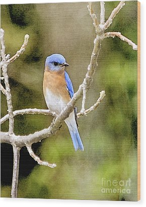 Wood Print featuring the photograph Rhapsody In Blue by Betty LaRue