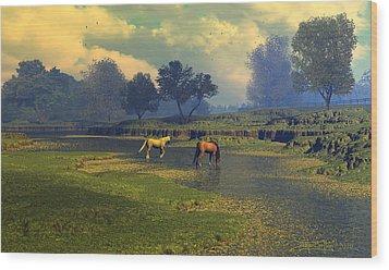 River Waltz Wood Print by Dieter Carlton