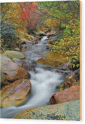 Rock Creek Wood Print by Tim Reaves
