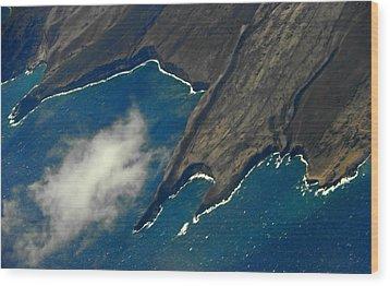 Rocky Hawaiian Coastline Wood Print by Elizabeth Hoskinson