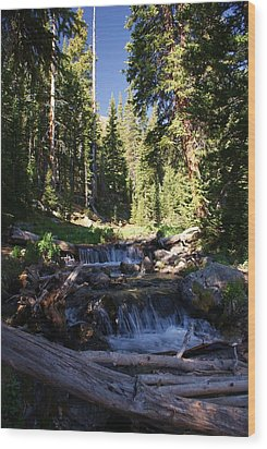 Rocky Mountain Summer Wood Print by Michael J Bauer