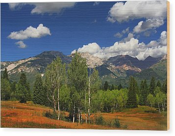 Rocky Mountains Wood Print by Mark Smith