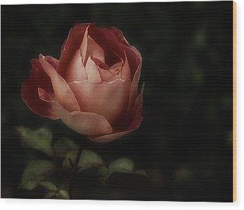 Romantic November Rose Wood Print