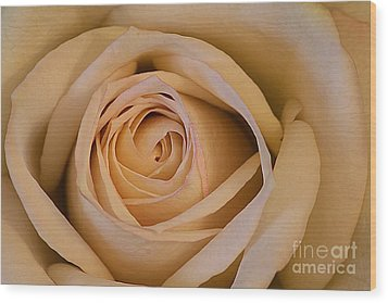 Rose Wood Print by Adrian LaRoque