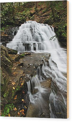 Wood Print featuring the photograph Salt Springs Waterfall by Christina Rollo