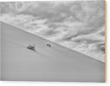 Wood Print featuring the photograph Sand And Clouds by Hitendra SINKAR