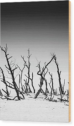 Sand Dune With Dead Trees Wood Print by Chevy Fleet