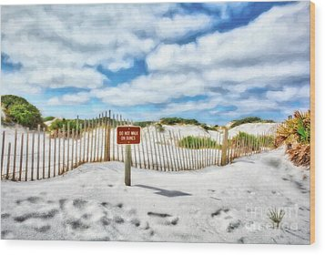 Wood Print featuring the photograph Sand Dunes At Grayton Beach # 4 by Mel Steinhauer