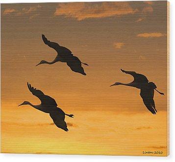 Sandhill Cranes At Dusk Wood Print