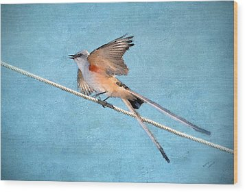 Scissor-tailed Flycatcher Wood Print by Betty LaRue