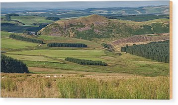 Scotland View From The English Borders Wood Print