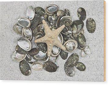 Seashells Wood Print by Joana Kruse