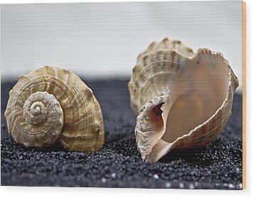 Seashells On Black Sand Wood Print by Joana Kruse