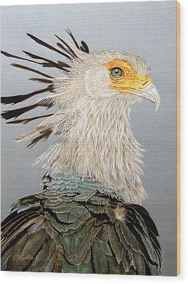 Secretary Bird Wood Print by Kathie Miller