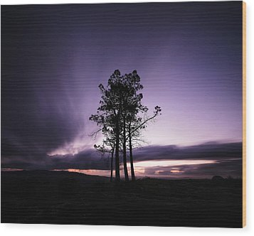 Wood Print featuring the photograph Sentinels by Antonio Jorge Nunes