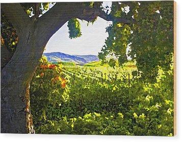 Shady Vineyard Wood Print by Patricia Stalter