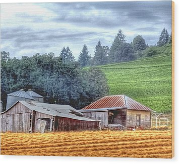 Shed And Grain Bins 17238 Wood Print by Jerry Sodorff