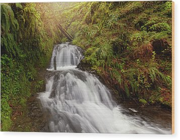 Shepperd's Dell Falls Wood Print by David Gn