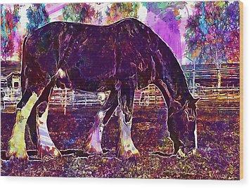 Wood Print featuring the digital art Shire Horse Horse Coupling  by PixBreak Art