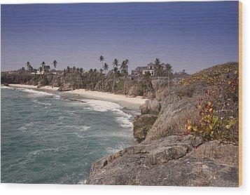 Shores Of Barbados Wood Print by Andrew Soundarajan