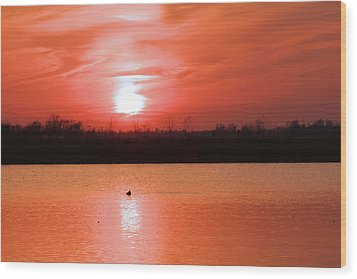 Silky Sunset Wood Print