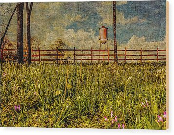 Siluria Cotton Mill Wood Print by Phillip Burrow