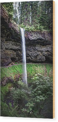Silver State Waterfall Wood Print