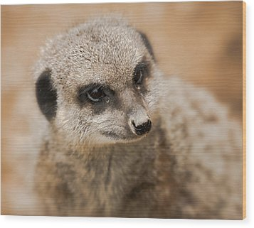 Wood Print featuring the photograph Simples by Chris Boulton