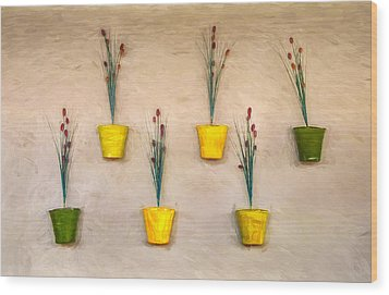 Six Flower Pots On The Wall Wood Print by Gary Slawsky