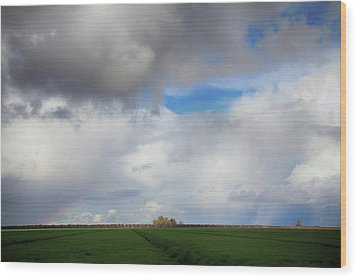 Wood Print featuring the photograph Skyward by Laurie Search