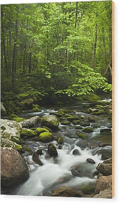 Smoky Mountain Stream Wood Print by Andrew Soundarajan
