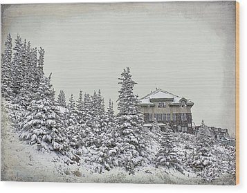 Wood Print featuring the photograph Snow In July by Teresa Zieba