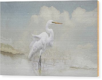 Snowy Egret Wood Print by Karen Lynch