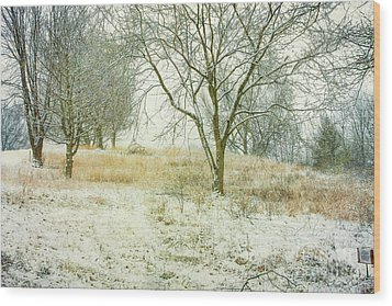 Wood Print featuring the digital art Snowy Winter Morning by Randy Steele