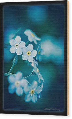 Wood Print featuring the photograph Soft Blue by Michaela Preston
