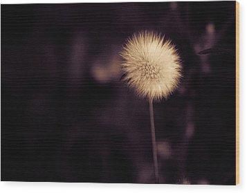 Tuft Wood Print by Lora Lee Chapman