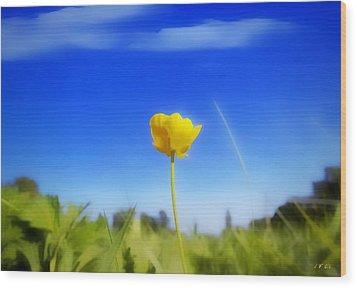 Solitary Flower Wood Print