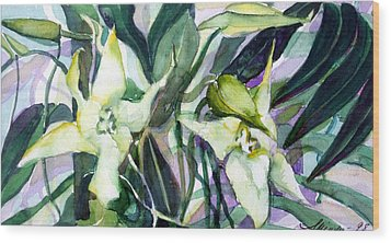 Spider Orchids Wood Print by Mindy Newman