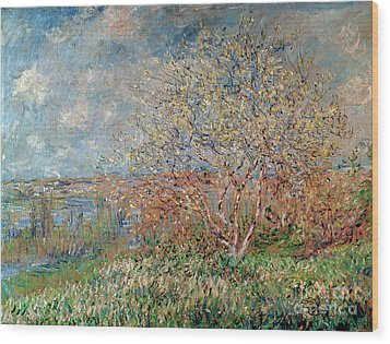 Spring Wood Print by Claude Monet