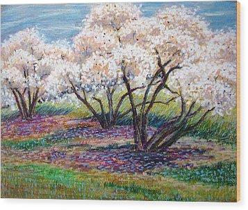 Spring Has Sprung Wood Print by Art Nomad Sandra  Hansen
