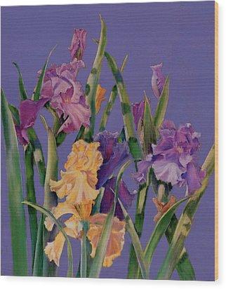 Spring Recital Wood Print by Ann Peck