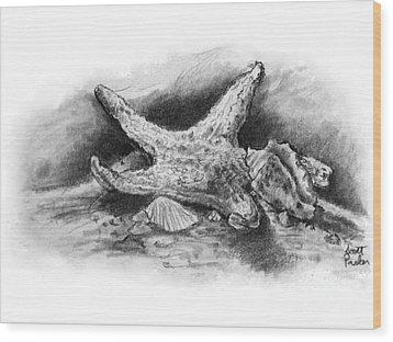 Star Fish Wood Print