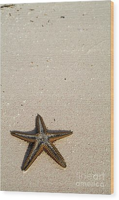 Starfish Partially Buried In White Sand Wood Print by Sami Sarkis