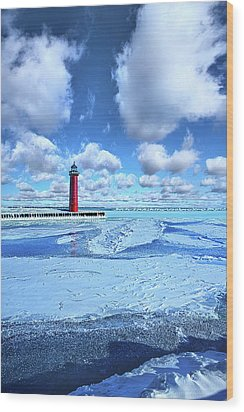 Wood Print featuring the photograph Steadfast by Phil Koch