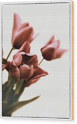 Wood Print featuring the photograph Still Life Tulips by Jessica Jenney