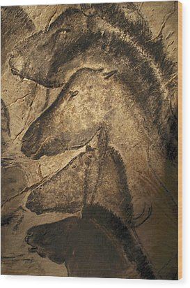 Stone-age Cave Paintings, Chauvet, France Wood Print by Javier Truebamsf