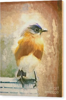Strapping Bluebird Wood Print by Tina LeCour